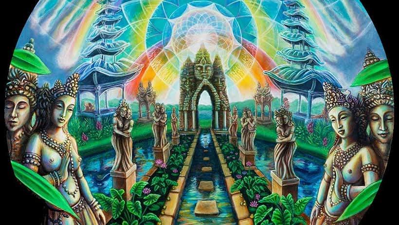 psychedelic retreats safe COVID-19