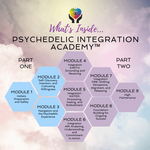 Psychedelic Integration online course